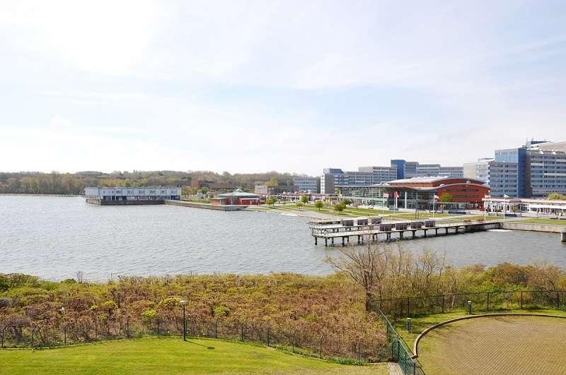 Freier Blick über den Binnensee (125837759)